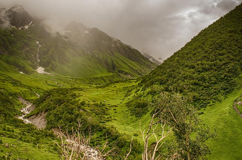 Valley of flowers, as beautiful as it can be
