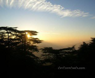 Delhi to Chail-Kufri-Shimla | Devil's First Trip