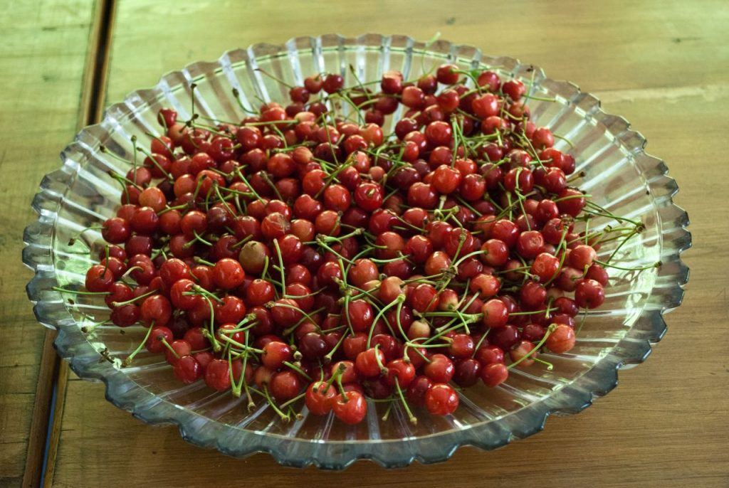 Want some fresh berries from Tirthan Valley?