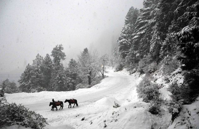 Hatu Peak - Narkanda, a place to enjoy Snowfall near Delhi