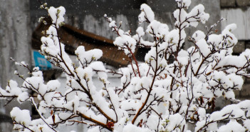 First Snowfall in Ladakh for 2011-12
