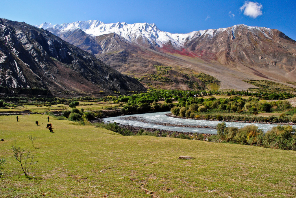 Suru Valley in all its magical glories