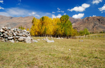 The fall colors of Srinagar Leh Highway