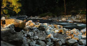 Delhi to Tirthan Valley, Himachal Pradesh | Travel Guide