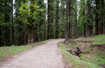 Trip to Chansal Pass – Rohru – Chakrata | Itinerary & Road Conditions