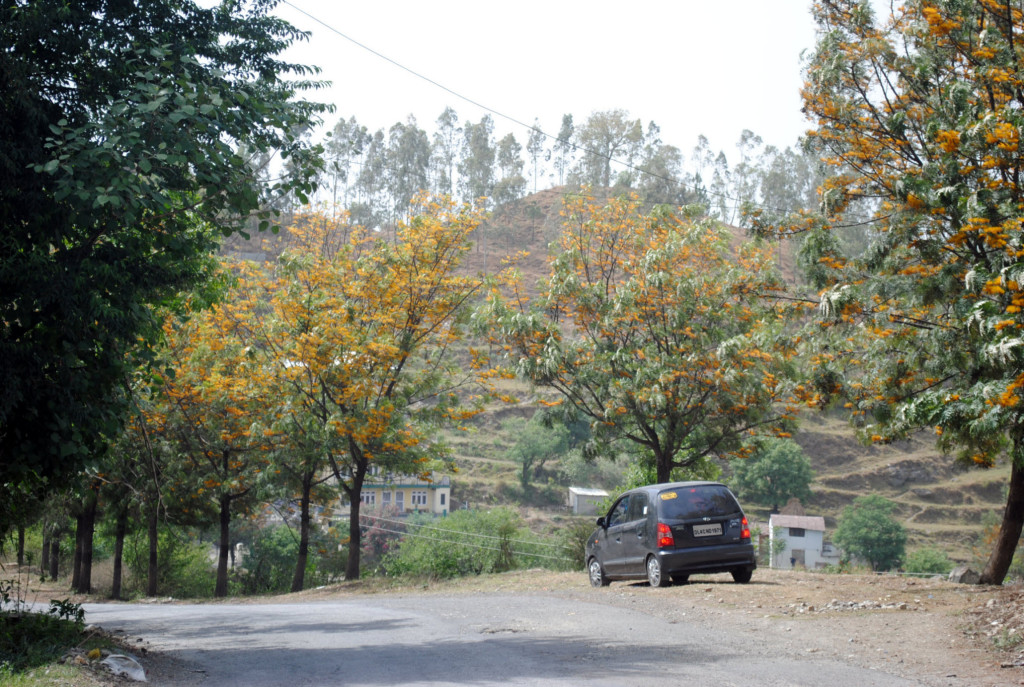 Colours in Kinnaur Valley