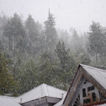 Snowfall at Manali, Rohtang, Kashmir, Shimla on New Year 2011