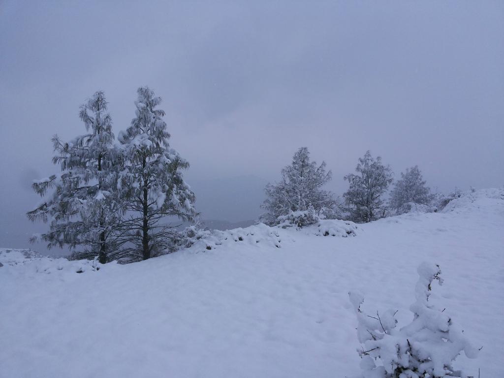 Chakrata - Deoban, a place to enjoy Snowfall near Delhi