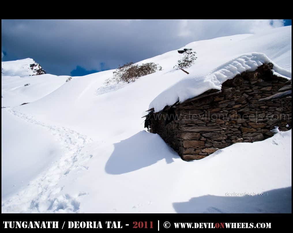 That snow trek to Tungnath - Chandrashilla