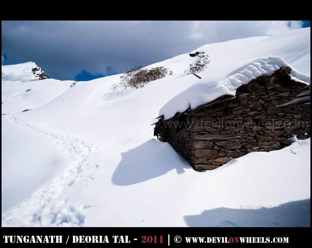 That snow trek to Tungnath - Chandrashilla