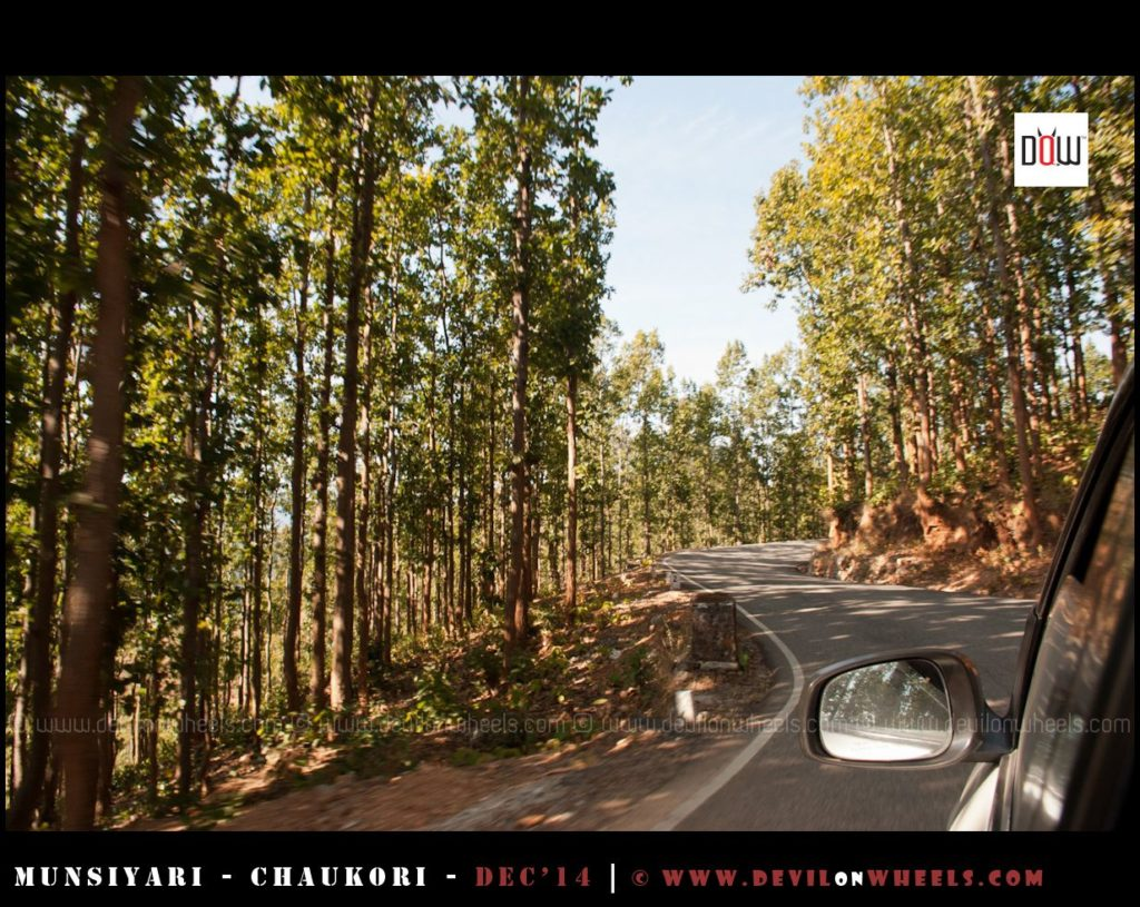 Driving through the jungles of Kumaon