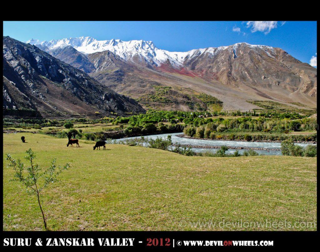 No wonder Zanskar Valley is called wonderland