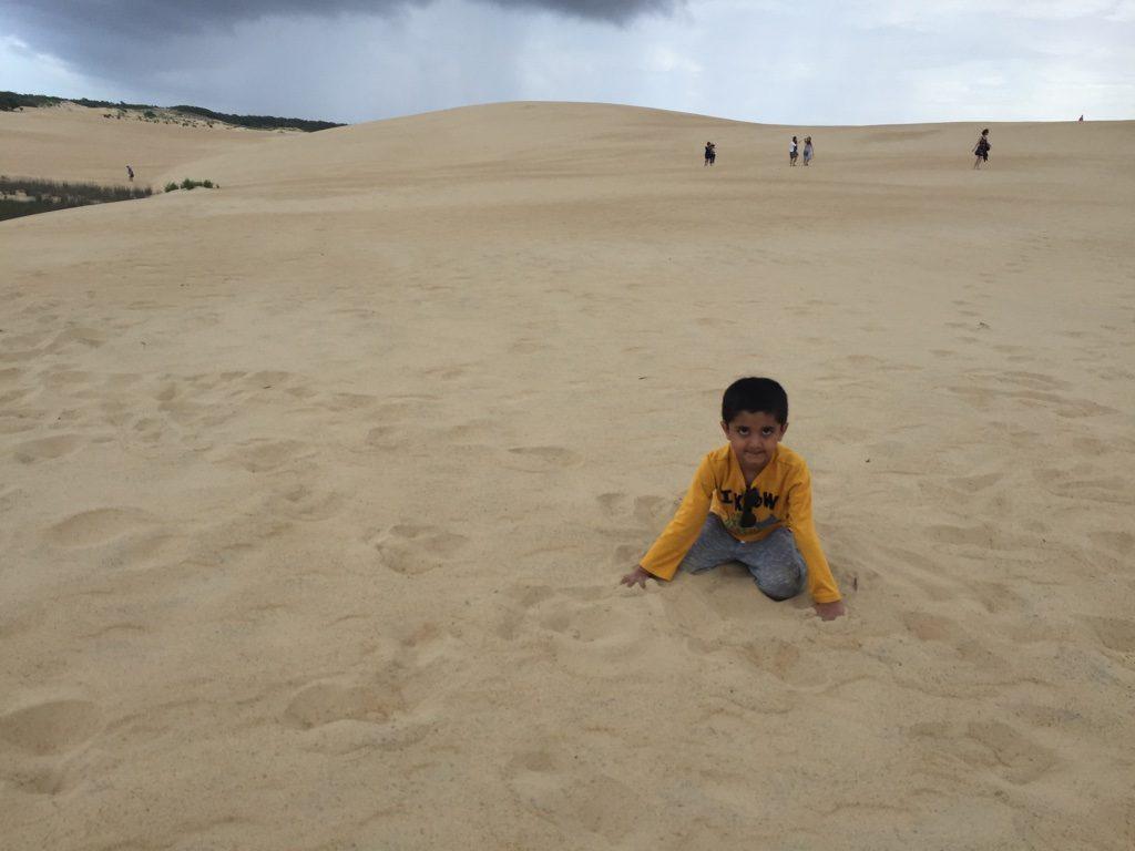 Sand Dunes of Jockey's Ridge State Park