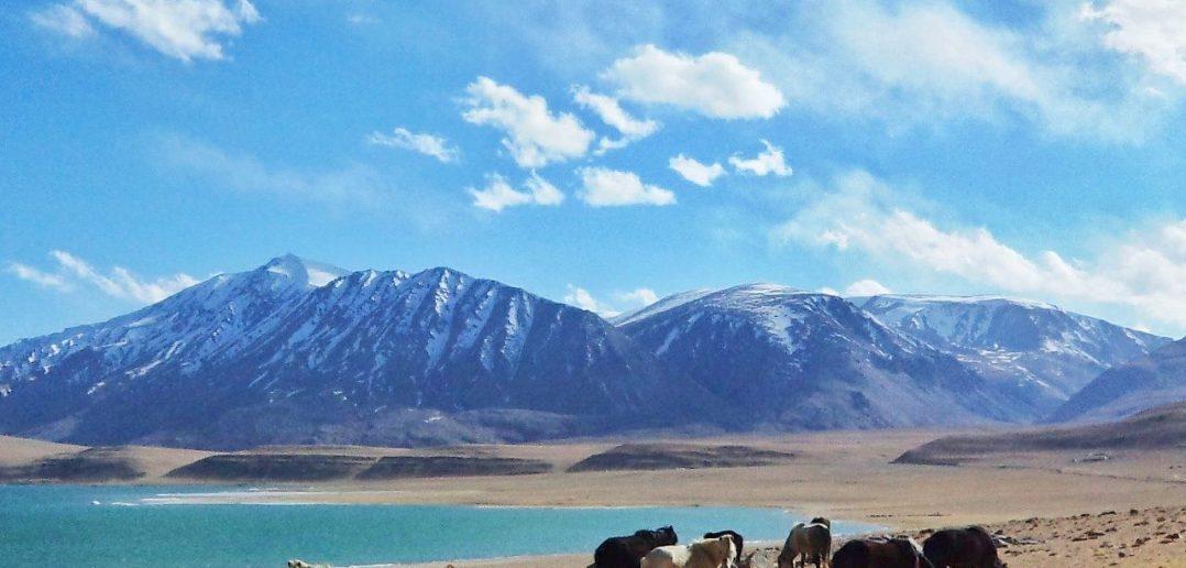 Beautiful Views of Leh Ladakh