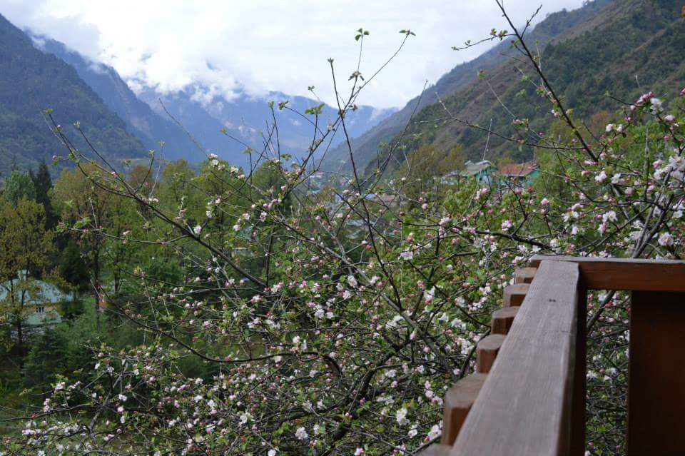 Lachung From Apple valley