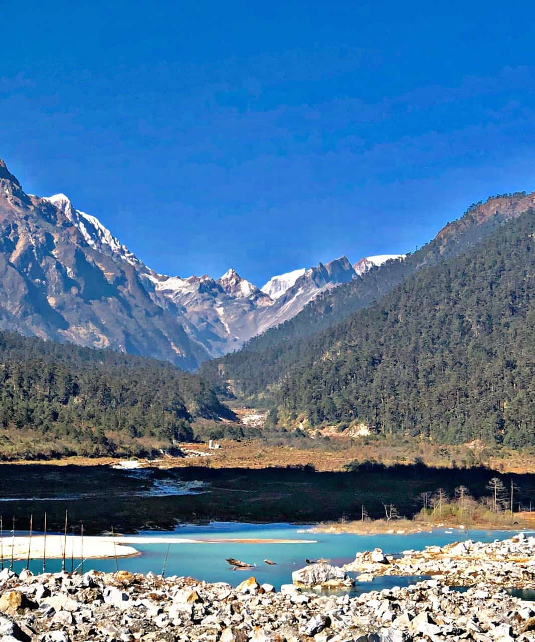 Sikkim, like a painting