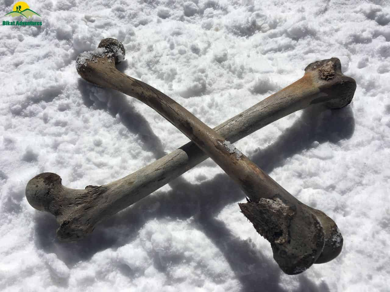 Bones at Roopkund Trek