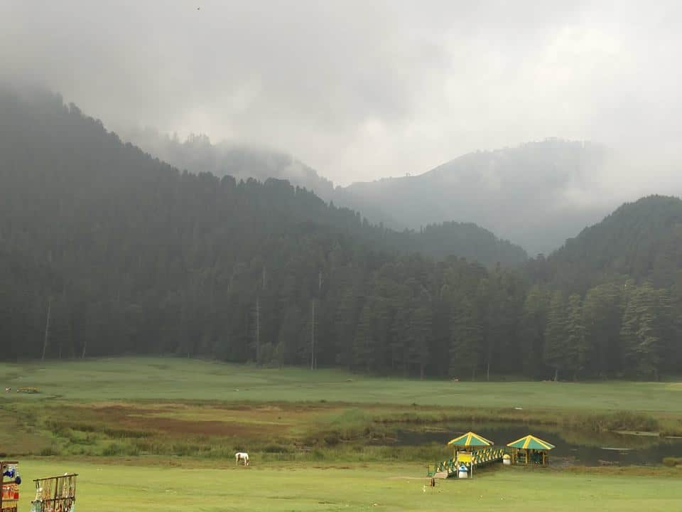 Do you love meadows in Himachal?