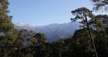 Himalayas at Dharamkot