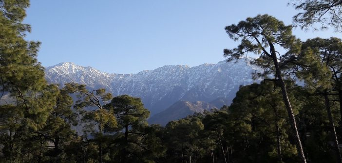 Dharamkot – A Complete Guide & Long Weekend Itinerary
