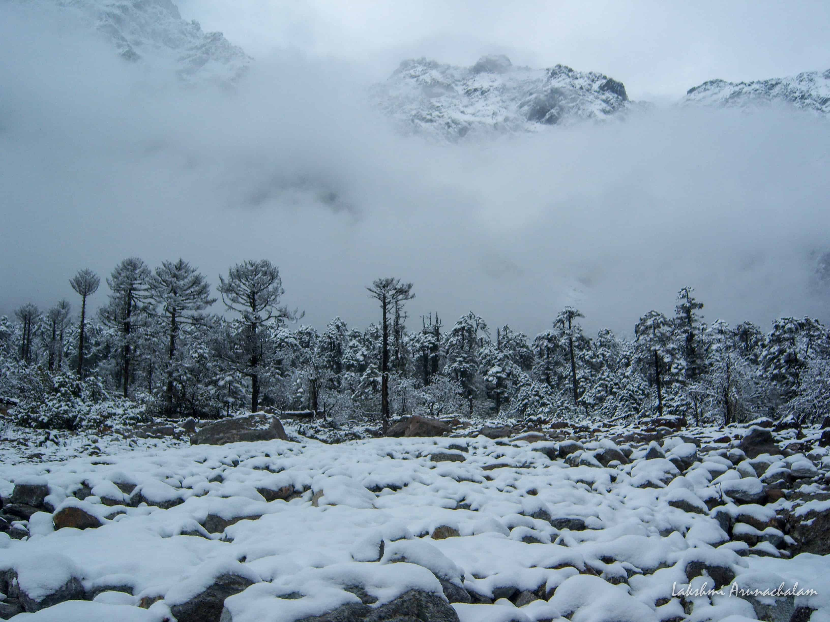 Shingba Sanctuary snowed down during winters