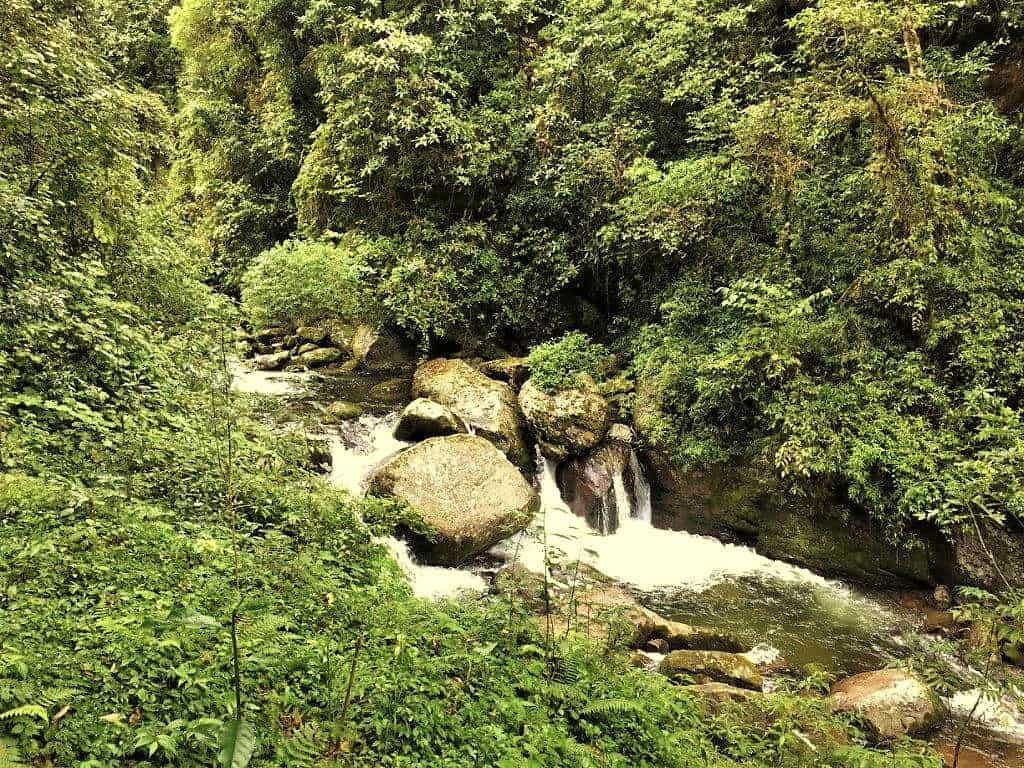 Srikhola Stream