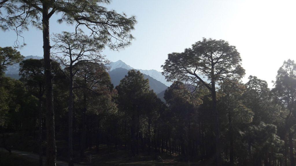 Dhauladhar mountain range