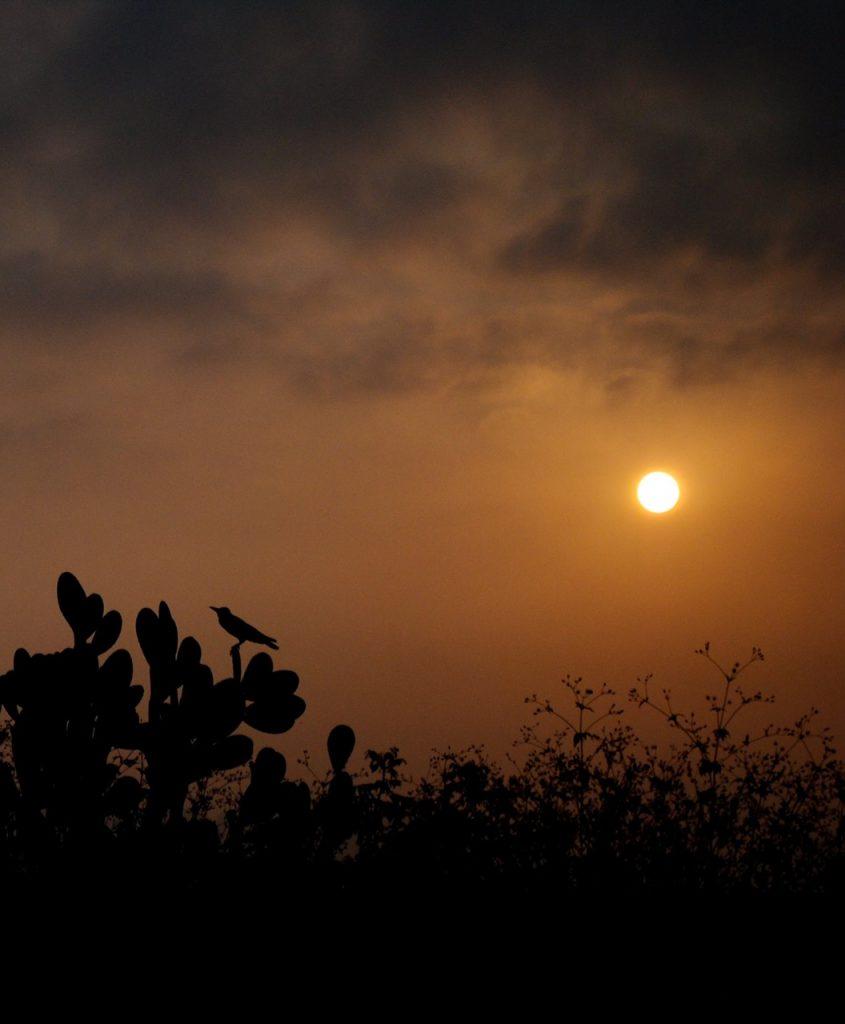Early morning at Shimla
