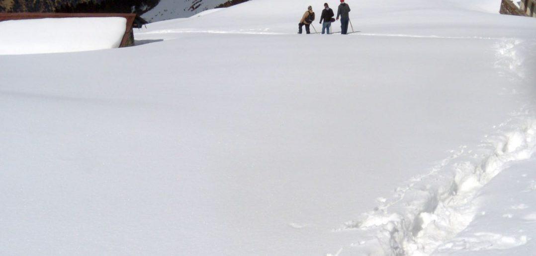 Snow trekking in the Himalayas