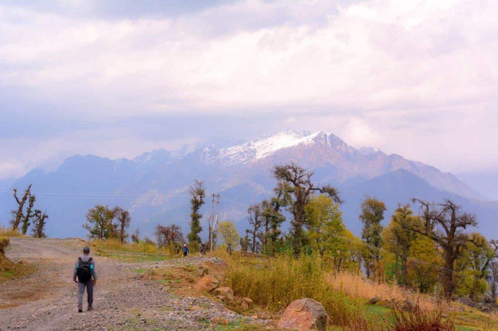 Trekking in Munsiyari Region