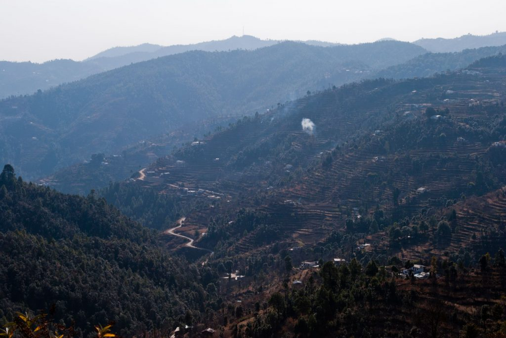 Out and about in nature in Mukteshwar