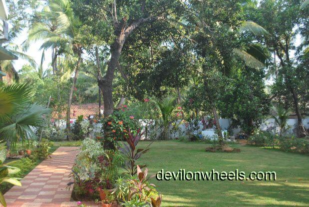 Garden or lawn in Ezue Bia Guest House at Candolim Beach in Goa