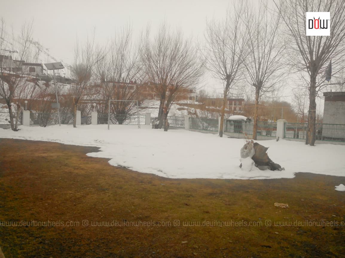 Lawn at Sakya Abode filled with Snow in March