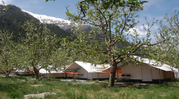 Apple Orchard Farm and Camping, Sangla Valley | Hotel Review