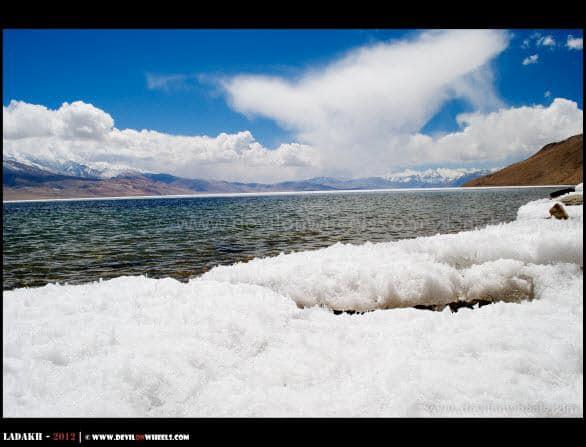 Blue Hues of Tso Moriri Lake - Ladakh