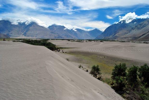 Sand dunes of Hunder, Nubra Valley in Leh - Ladakh