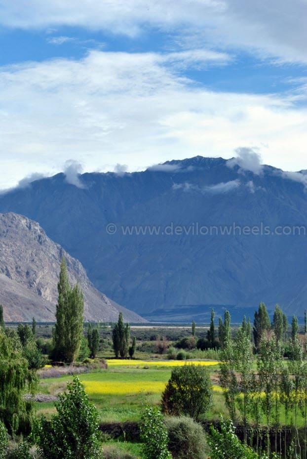 Diskit in Nubra Valley of Leh - Ladakh