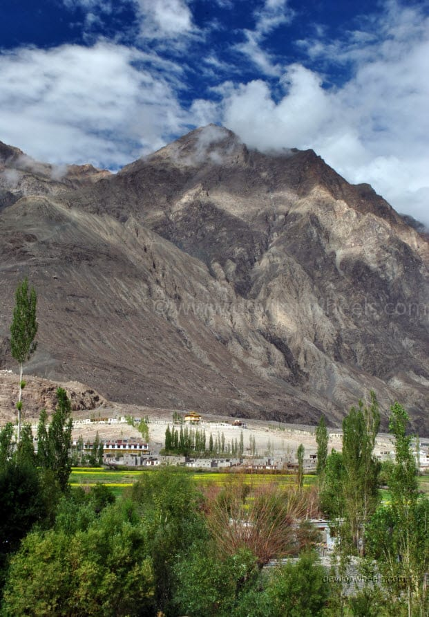 Diskit in Nubra Valley of Leh - Ladakh