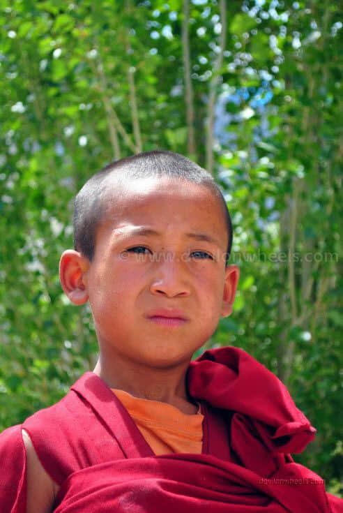 A child Monk at Diskit monastery, Nubra Valley of Leh - Ladakh