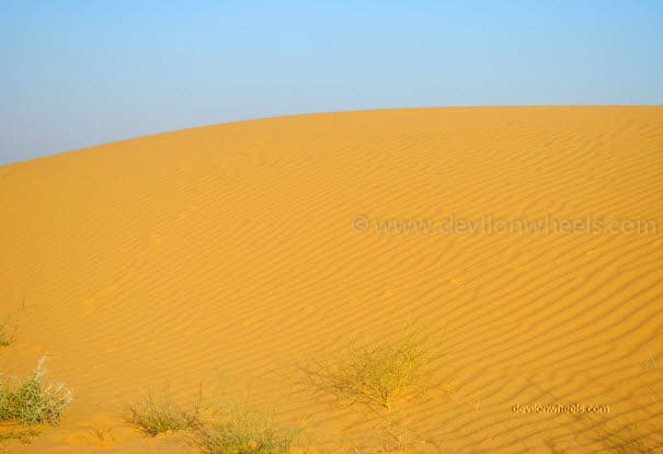 Sam Sand Dunes, Jaiselmer