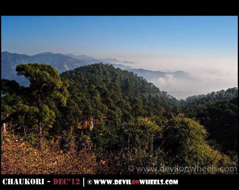 Clouds floating below as seen from the ascend road to Nainital