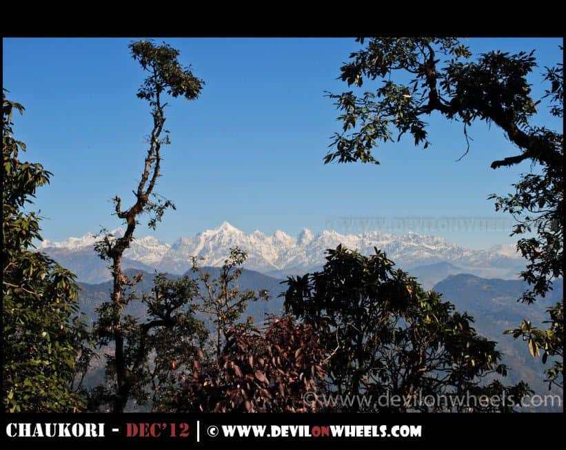 Amazing View of Panchulli Peaks on the Hike to Musk Deer Park at Chaukori