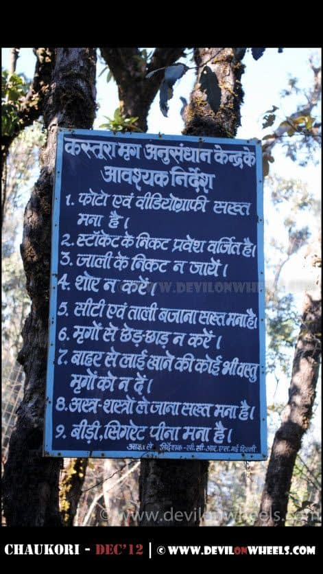 Musk Deer Park Chaukori, Photography Strictly Prohibited