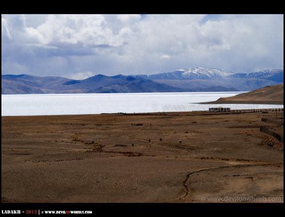 Frozen... Tso Moriri Lake As Seen from Korok Monastery...