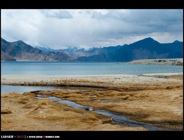 Blue Hues of Pangong Tso