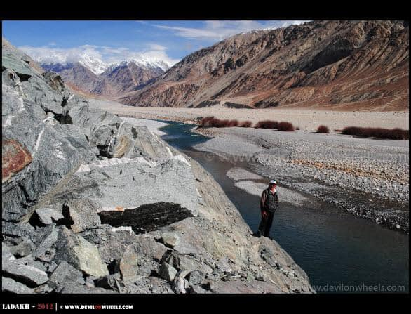 Would you dare for a high jump into Shyok River