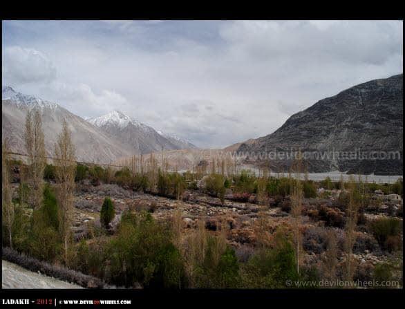 Lovely Teger Village in Nubra Valley