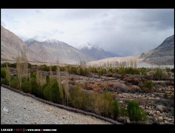 Lovely Teger Village in Nubra Valley