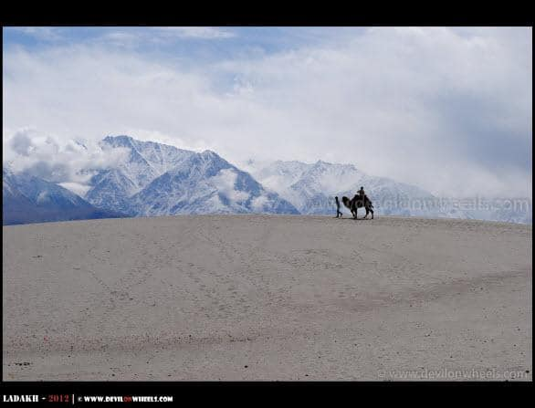 Solitude... The High Alitiude Camel Safari at Hunder Village