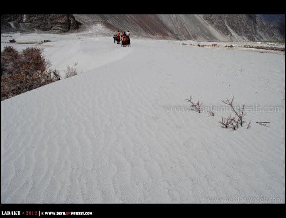 Sand Dunes at Hunder Village